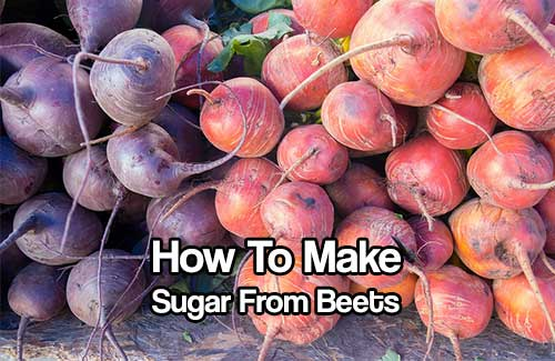 How To Make Your Own Sugar From Beets