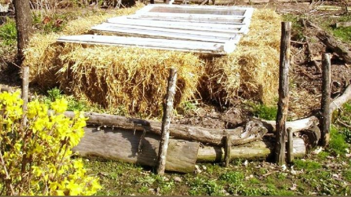 How to Build a Cold Frame in Under 30 Minutes With No Tools