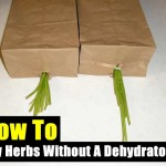 How To Dry Herbs Without A Dehydrator To Preserve Them For Future Use
