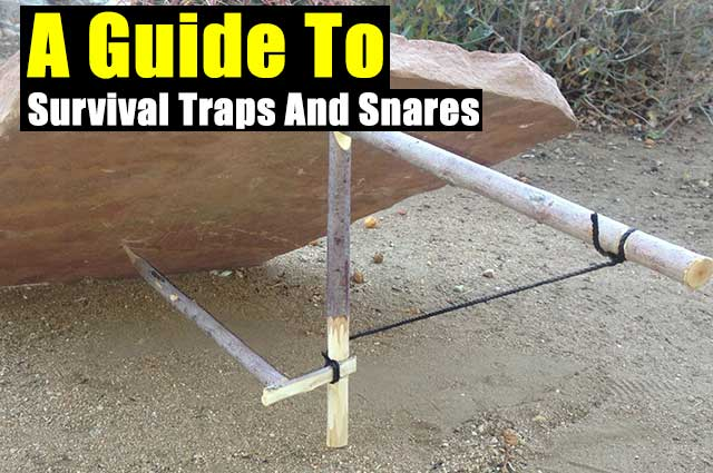 A Guide To Survival Traps And Snares - The best traps are usually very simple to make and should be placed in multiple locations. When using traps and snares, numbers are very important. The more traps you place, the better your chances are of catching something.
