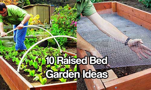 10 Raised Bed Garden Ideas Shtf Prepping Homesteading