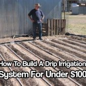 How To Build A Drip Irrigation System For Under $100
