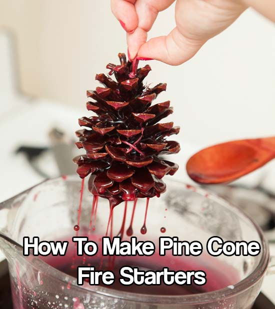 How To Make Pine Cone Fire Starters - This DIY project is creative and practically free. These dipped pinecones are so easy that this can be a really fun project with your kids, too!