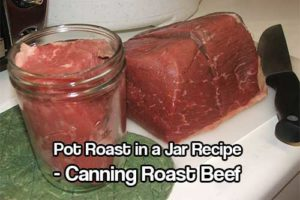 Pot Roast in a Jar Recipe: Canning Roast Beef - Beef has a lot of protein and energy, this is not only fun but a great reserve to have at home just in case! The pot roast actually tastes better than regularly cooked beef, I am not sure if it's because all of the juices can sit in the meat until you eat it.