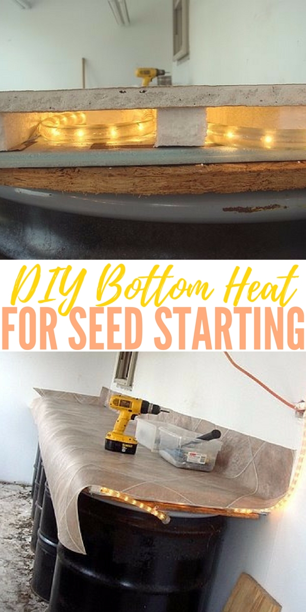 "DIY Bottom Heat for Seed Starting — Retail bottom heat is expensive – I saw one ""kit"" at a local garden center that was big enough for 2 flats and was $79 – wow! You can buy a lot of tomato plants for eighty bucks!"