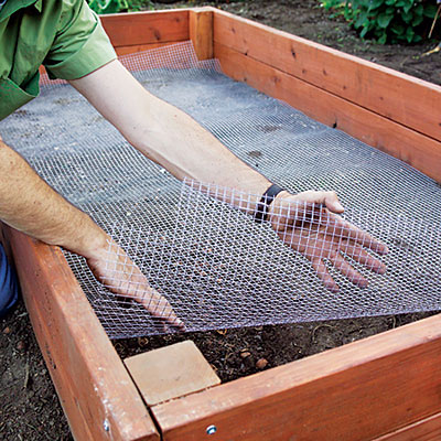 Raised bed is well suited to novices picking up a shovel for the