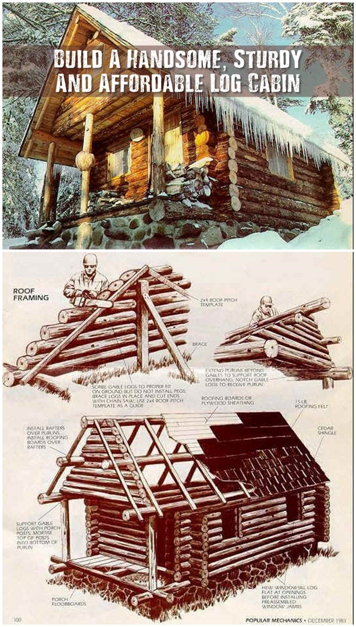 Build a handsome sturdy and affordable log cabin a for Building an affordable cabin