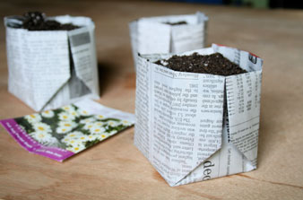 origami-newspaper-pot-medium