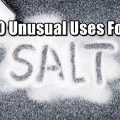 Natural archives shtf prepping central - Unusual salt uses ...