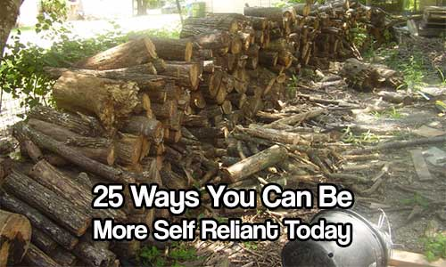 25 Ways You Can Be More Self Reliant Today - Self reliant living has always been an important skill. From the Pilgrims to the generation that lived through the Depression and WWII the ability to survive and thrive during times of intense hardship made the difference between life and death – freedom and slavery.