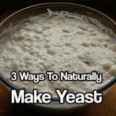 """3 Ways To Naturally Make Yeast - Call me """"green, frugal, cheap, or just smart"""". I do not buy store bought yeast anymore. I am cheap and I admit it! I actually prefer to make my own because I know what's in it and I save a ton of money over the years!"""