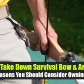 The Take Down Survival Bow & Arrow: 6 Reasons You Should Consider Owning One - Ammo runs out, guns fail... A good bow and arrow in your arsenal could mean the difference between starvation and survival.