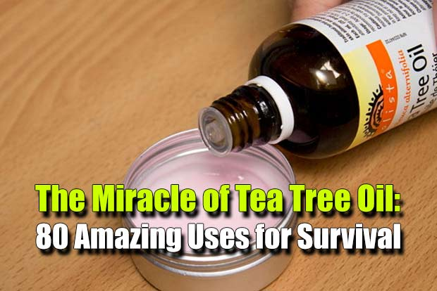Shtf Emergency Preparedness: The Miracle Of Tea Tree Oil: 80 Amazing Uses For Survival