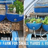 How To Build a Vertical Aquaponic Veggie & Fish Farm For Small Yards & Houses