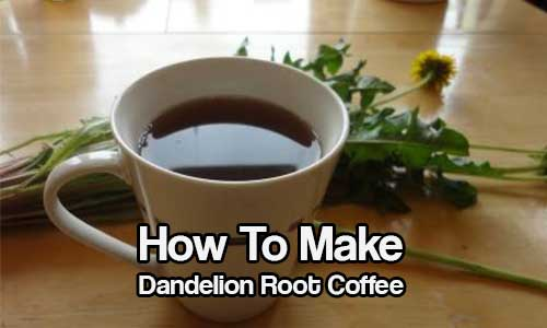 How To Make Dandelion Root Coffee - SHTF & Prepping Central