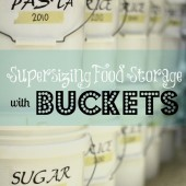 Food Storage With Buckets 101