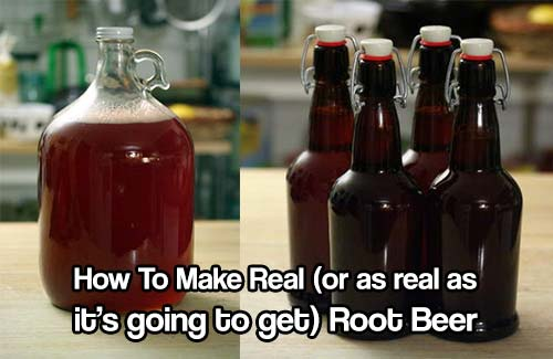 How To Make Real (or as real as it's going to get) Root Beer - There's an old-fashioned charm to homemade root beer with its odd array of roots and bark, flowers, leaves and berries.  It, like many other fermented beverages, once enjoyed position as a staple of American cookery.