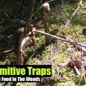 Six Primitive Traps For Catching Food In The Woods