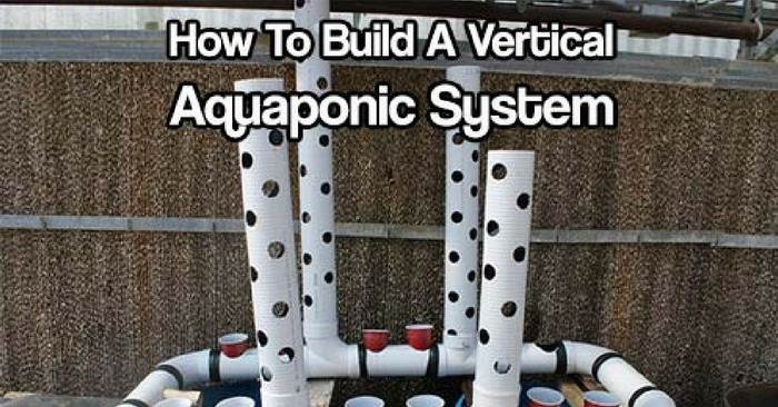 How To Build A Vertical Aquaponic System — You can turn a small yard, a corner in a community garden or an unused space in your home into a thriving vertical farm for vegetables and fish. A household-sized vertical aquaponic system can fit into a 3ft by 5ft (1m x 2m) area and feed a family year-round.