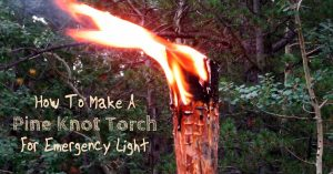 How To Make A Pine Knot Torch For Emergency Light - Whether navigating the woods in a survival situation or simply needing an emergency light when resources are limited, knowing how to make a torch with just a few common supplies is a valuable skill.