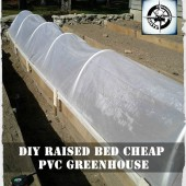 DIY Raised Bed Cheap PVC Greenhouse
