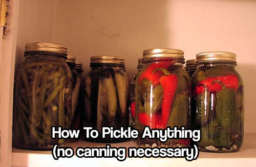 How to Pickle Anything (no canning necessary) - Pickling is a simple and delicious way to preserve food. It is also a great addition to canning as it gives you a greater variety of food tastes and textures in your food stockpile.