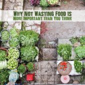 Why Not Wasting Food is More Important Than You Think - Did you know that it takes 150 gallons of water to make a 1/4 pound hamburger? That is truly hard to imagine. So it goes without saying that even small decreases in the amount of food waste you produce, or even consume, will pay large dividends in water and energy savings in the long run.