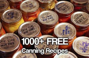 1000+ FREE Canning Recipes - Are you just starting to can? Are you a seasoned canner? We all could do with more canning recipes, the site I came across has over 1000 recipes for you to browse and download for free. There are recipes for sauces, jellies, healthy food and even puddings.