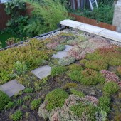 DIY Living / Green Roof