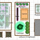 Planting a Fall Garden the Easy Way (FREE Planning Tools)