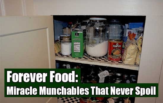 Forever Food: Miracle Munchables That Never Spoil - A lot of people don't realize is that a handful of foods/sauces actually boast a shelf life of forever. Do you know of any others we can add to the list?