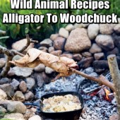 Wild Animal Recipes: From Alligator To Woodchuck