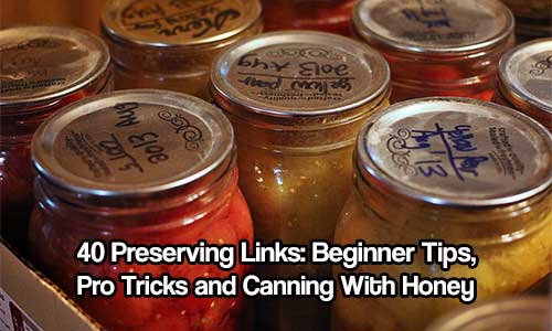 40 Preserving Links: Beginner Tips, Pro Tricks and Canning With Honey - If you are starting out or are a pro canner this article will be in your bookmark for life. They have lots of links to awesome canning recipes, tips and canning how to's.