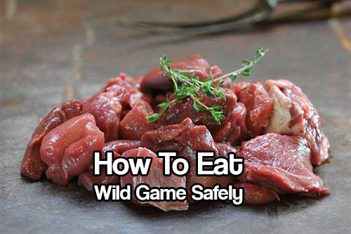 """How To Eat Wild Game Safely - If SHTF you will run out of food one day, after that day happens you will need to catch your own food, or scavenge from dead carcass. You may shun it and say """"never"""" but you will, when you are starving."""