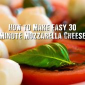 How to Make Easy 30 Minute Mozzarella Cheese - All you need is a gallon of milk, if you own a cow this would be free, lol, but in all seriousness you will not tell the difference between store brought Mozzarella to your own. Our best advice to date is to buy a LOCAL milk one that has not had to have the extensive Long Haul treatment. The fresher the milk the better tasting your cheese will be.