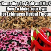 Home Remedies for Cold and Flu Season: How To Make Your Own Hot Echinacea Herbal Tincture - As much as I hate to say this, winter is fast approaching which means colds and flu will be here in no time. Learn these home remedies to shorten the duration, prevent future illness and speed up recovery!