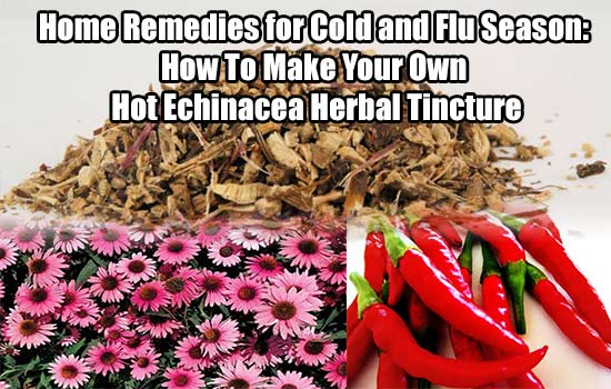 Home Remedies For Cold And Flu Season How To Make Your