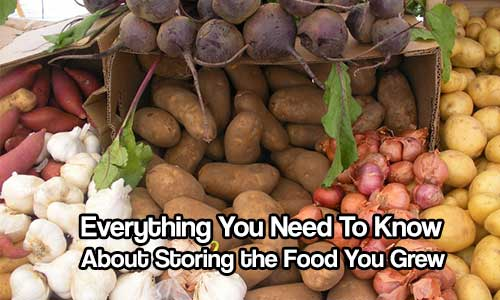 Everything You Need to Know About Storing the Food You Grew