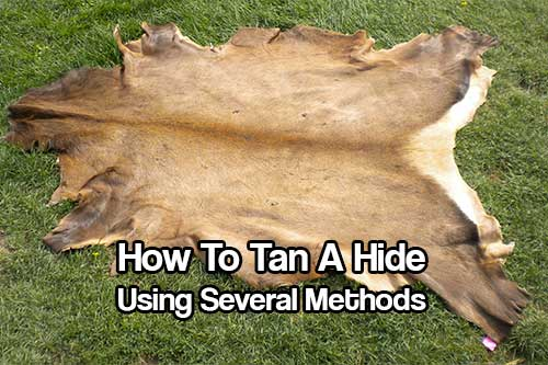 How To Tan A Hide Using Several Methods - Knowing how to tan a hide is a very important skill to know. If SHTF, there will be no new sheets, no new blankets being made or imported in. It will be up to us to stay warm.