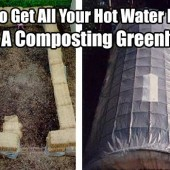 How To Get All Your Hot Water Needs From A Composting Greenhouse