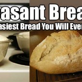 Peasant Bread: The Easiest Bread You Will Ever Make