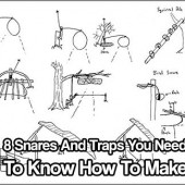 8 Snares And Traps You Need To Know How To Make