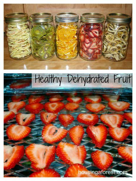 DIY Healthy Dehydrated Fruit Snacks