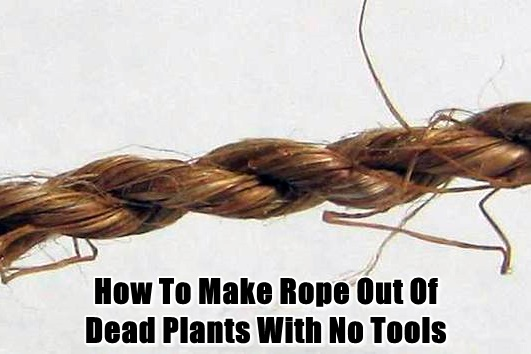How To Make Rope Out Of Dead Plants With No Tools