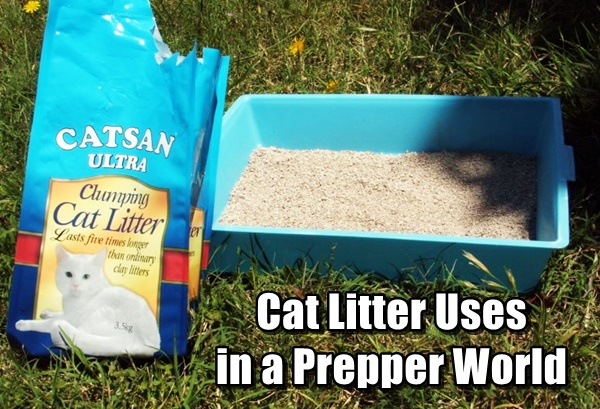 Cat Litter Uses in a Prepper World
