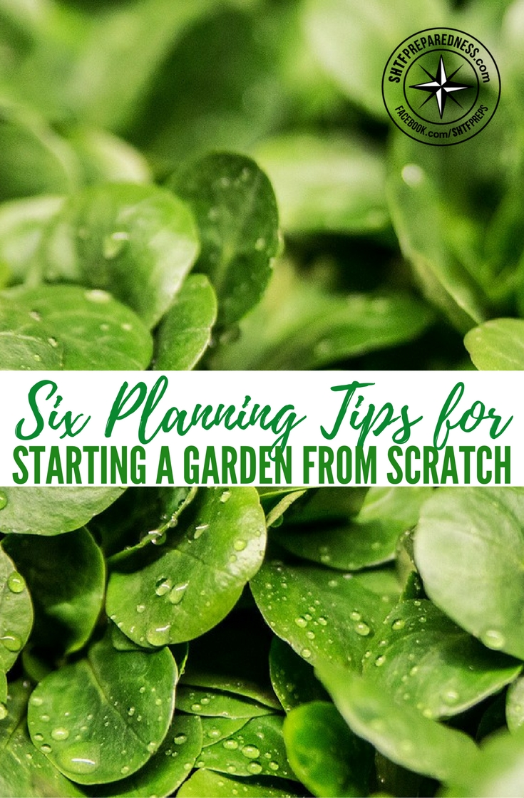 Six planning tips for starting a garden from scratch for How to start a garden from scratch