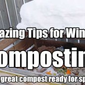 Amazing Tips for Winter Composting