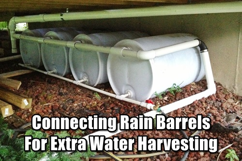Connecting Rain Barrels For Extra Water Harvesting