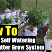 How to Build a Self Watering Rain Gutter Grow System