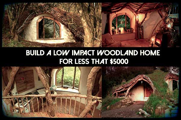 Build a low impact woodland home for less that 5000 for Build a cabin for under 5000